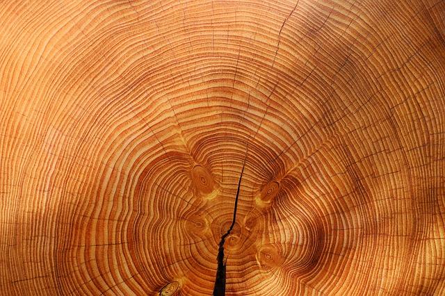 Starostlivosť o drevený nábytok