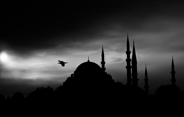Silueta veží a mešity, nad ktorými letí vták